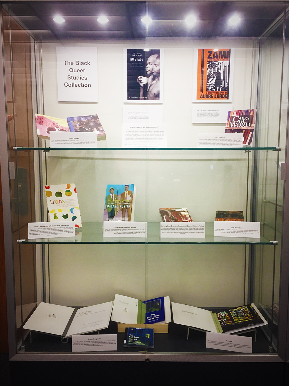 Exhibit of items from the Black Queer Studies Collection.