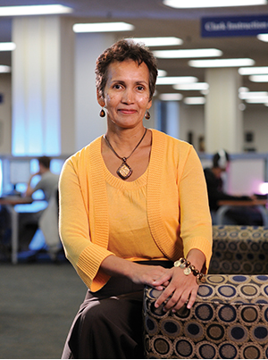 lorraine j. haricombe, Vice Provost and Director, University of Texas Libraries.